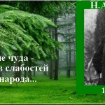 Н.А. Бердяев — цитаты