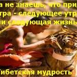 Тибетская мудрость